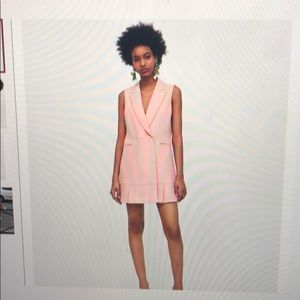Pink Zara pleated waistcoat vest dress, worn once.